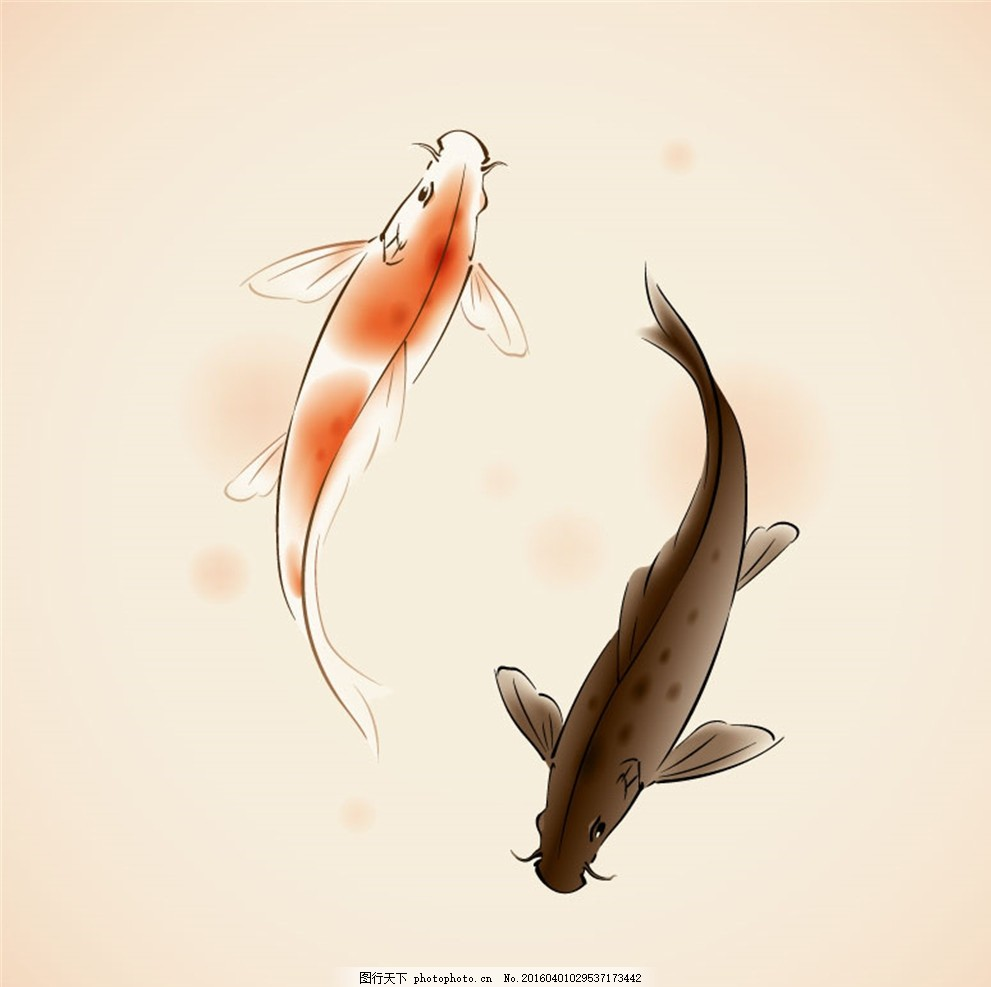 水彩锦鲤矢量素材 鲤鱼 乌鲤 观赏鱼 动物 水彩画 矢量图