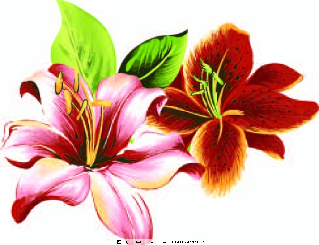 花纹背景 复古背景 欧式花边 纹理背景 花朵 背景图 底图 背景图设计