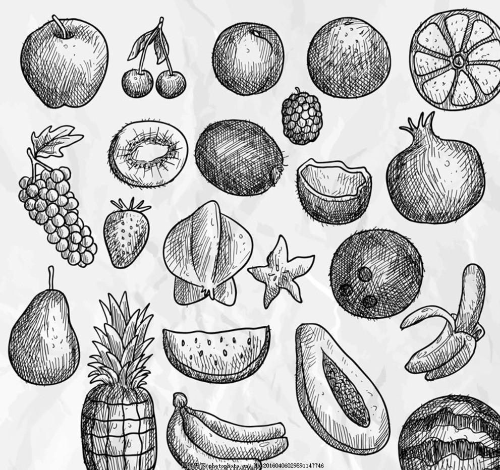 手绘水果 水果 苹果 樱桃 橙子 杨梅 葡萄 猕猴桃 石榴 香蕉 西瓜