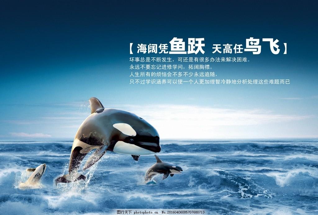 海洋海豚 图片下载 海洋 海豚 鱼跃 天空海洋 素材 广告素材 ps 分层