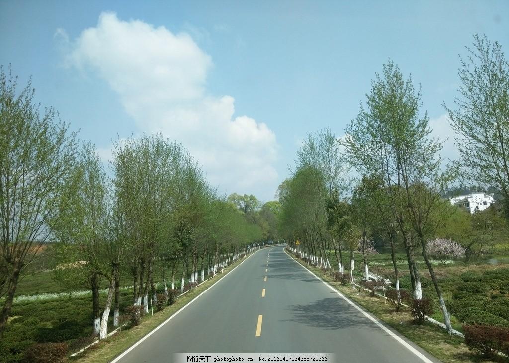 道路风景 图片素材 风景 自然风光 马路 公路 道路 蓝天绿树 春天
