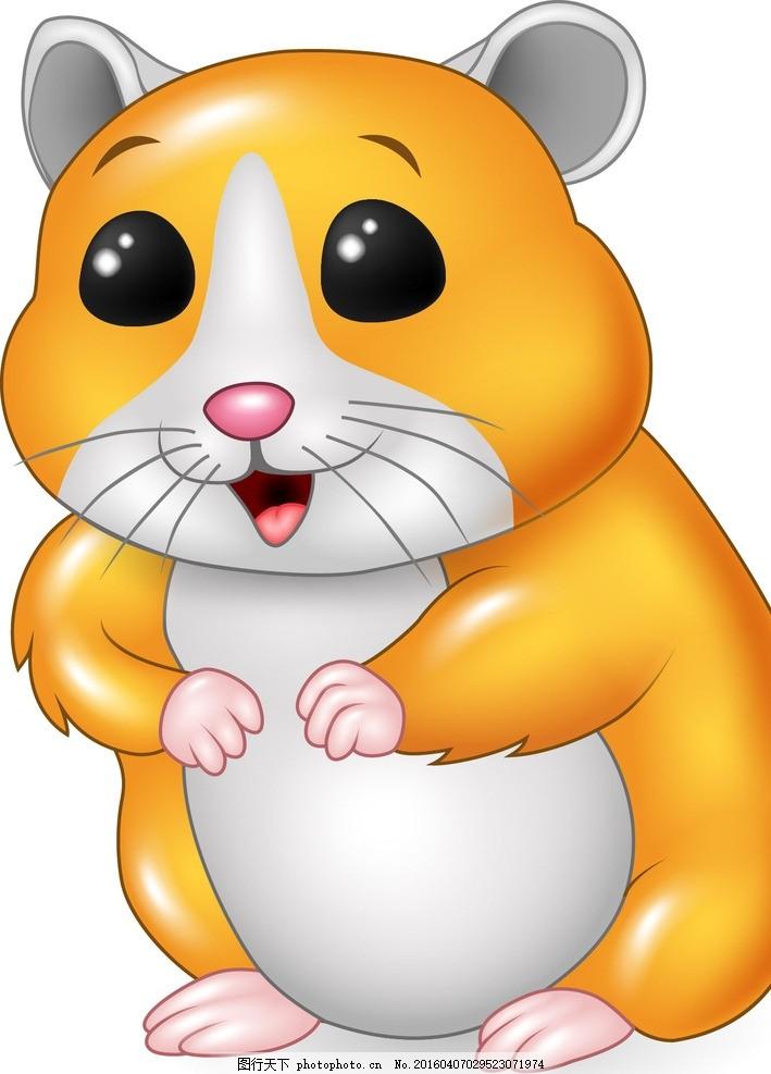 卡通仓鼠 金丝熊 可爱 宠物 家禽家畜
