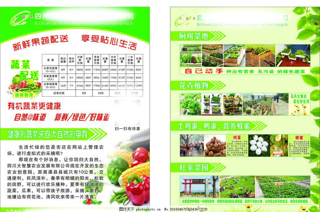宣传单 菜 青菜 蔬菜 水果 绿色 食品 单 传单 配送 树 树叶 设计