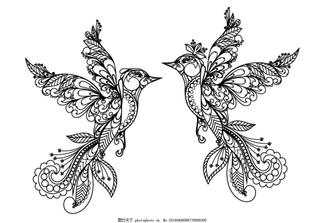 小鸟线描 小鸟 工笔花鸟 白描花鸟 动物 蜂鸟 设计 底纹边框 条纹线条