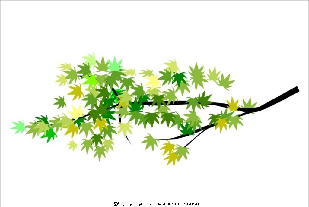 树枝 树叶 叶子 树杆 绿叶 树苗图片