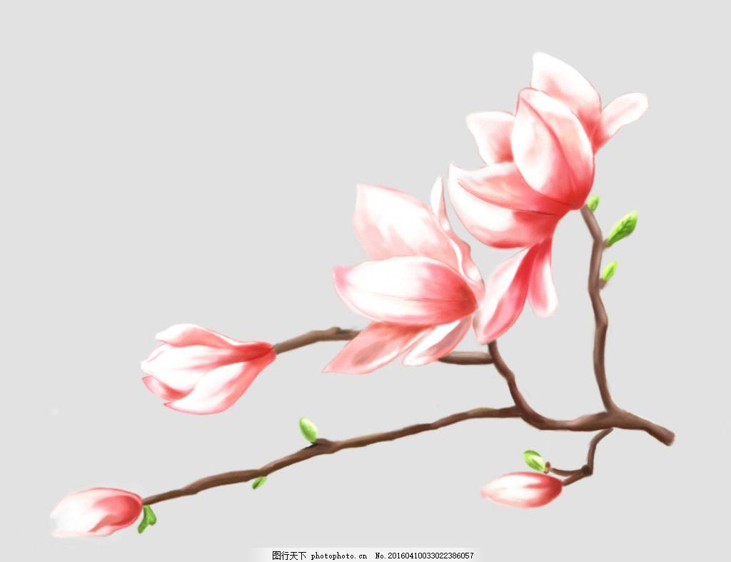 手绘花朵 手绘 花 粉色花 植物 树枝 设计 psd分层素材 psd分层素材
