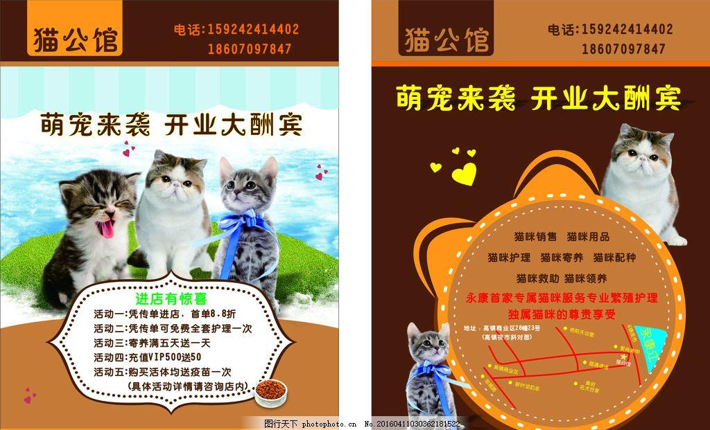 猫咪宠物店开业 猫咪 宠物 开业 宣传单 店铺 设计 广告设计 dm宣传单