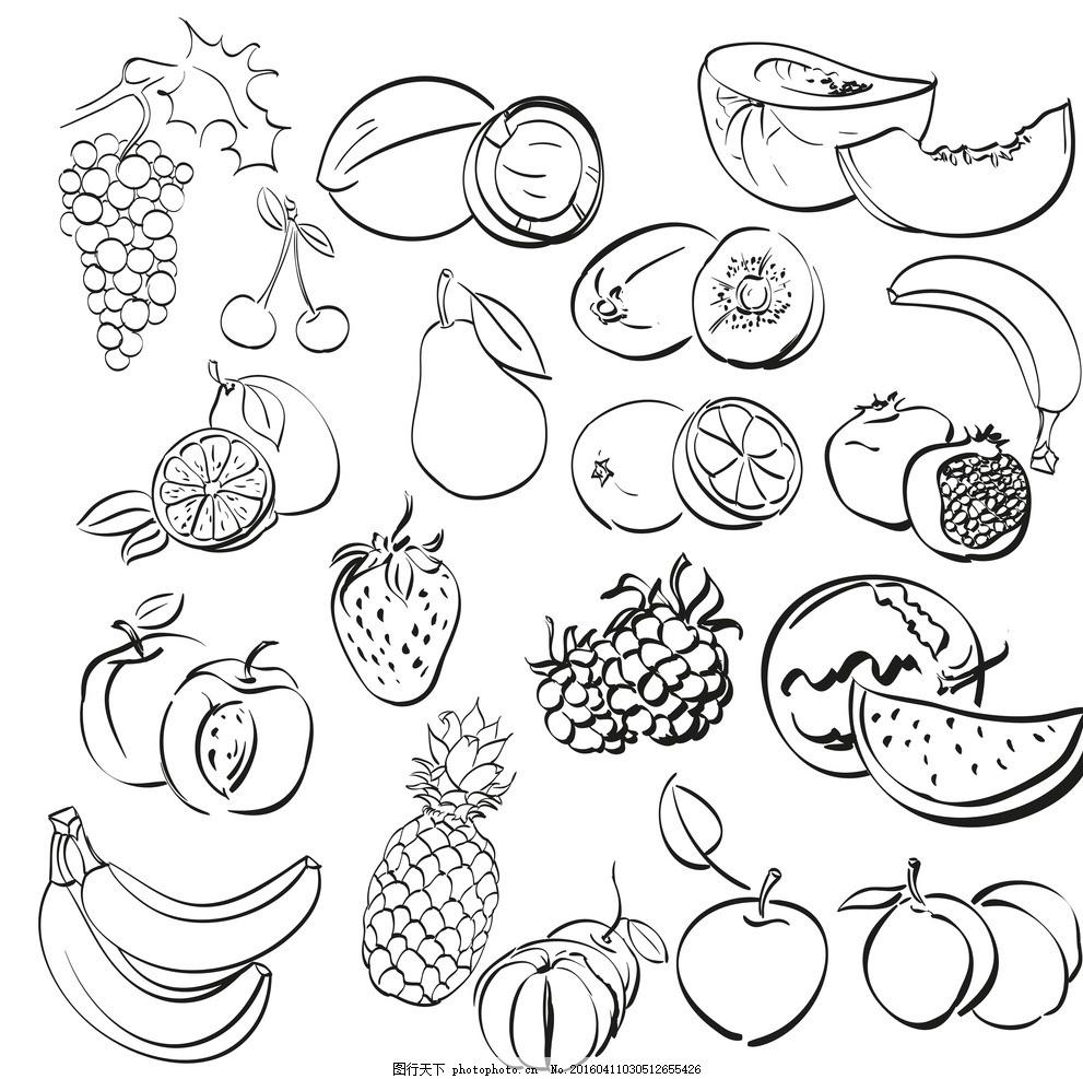 水果线描画