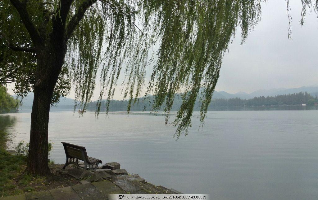 西湖风景 杭州西湖 风景区 西湖美景 湖水 荷叶 历史风景区 摄影 旅游