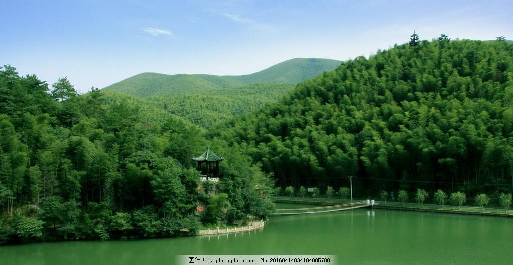 竹子 竹海 湖水 竹林 摄影 自然景观 自然风景 72dpi jpg