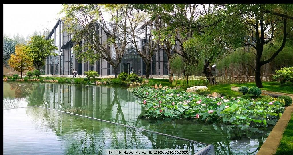 驳岸设计 植物配置 驳岸 景观设计 湖岸 荷花 设计 环境设计 景观设计