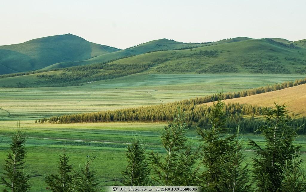 草原风光 山野 山脉 山丘 沽源 坝上草原 风景 自然风光 田野