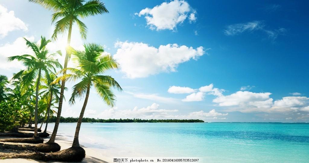 大海 海洋 海滩 蓝天 白云 椰子树 自然风景 摄影 自然景观 自然风景