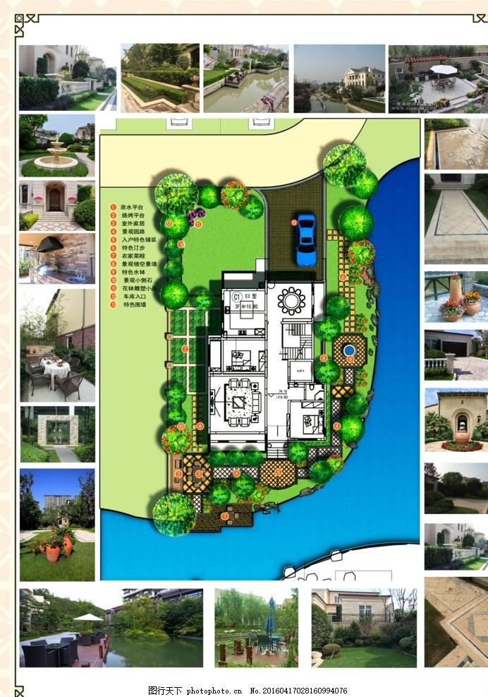 彩色平面图 庭院景观设计 植物彩平素材 亲水平台 庭院设计施工 素材