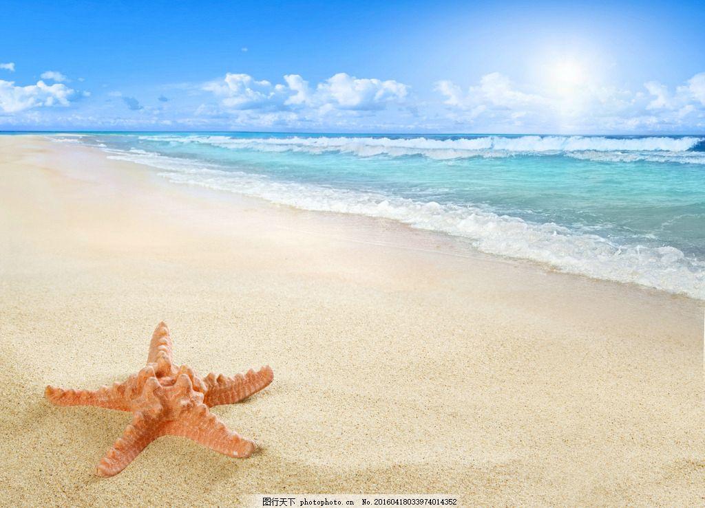 秦皇岛海边 唯美 风景 风光 旅行 自然 大海 海景 海星 摄影