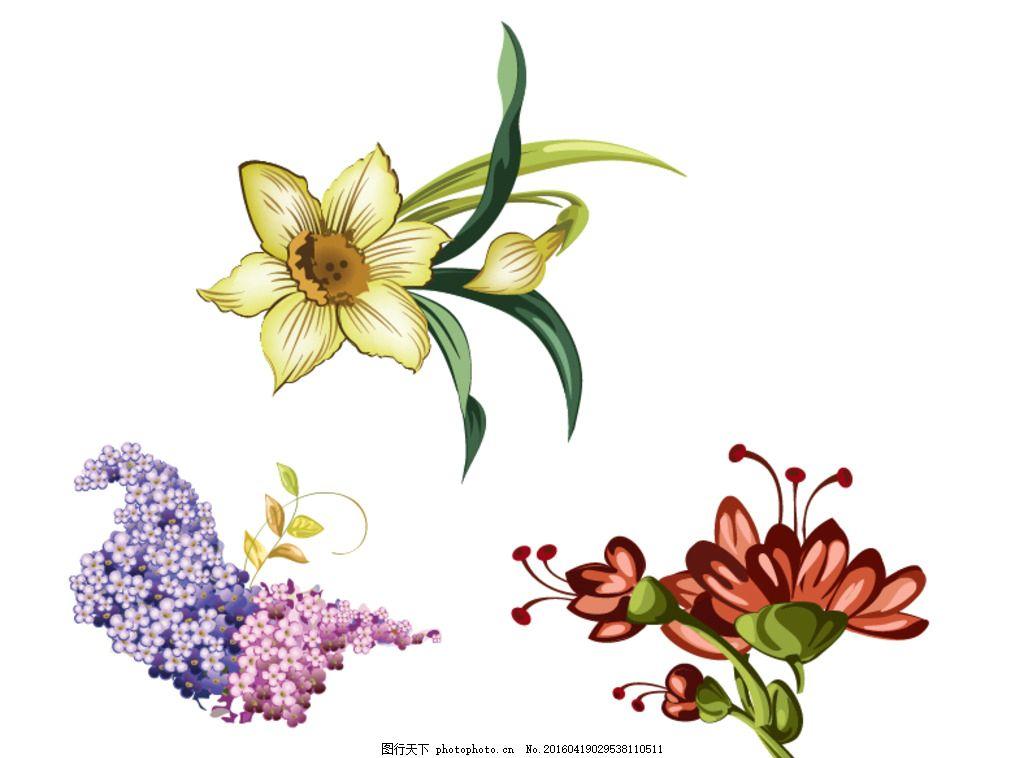 好看的兰花手绘图片