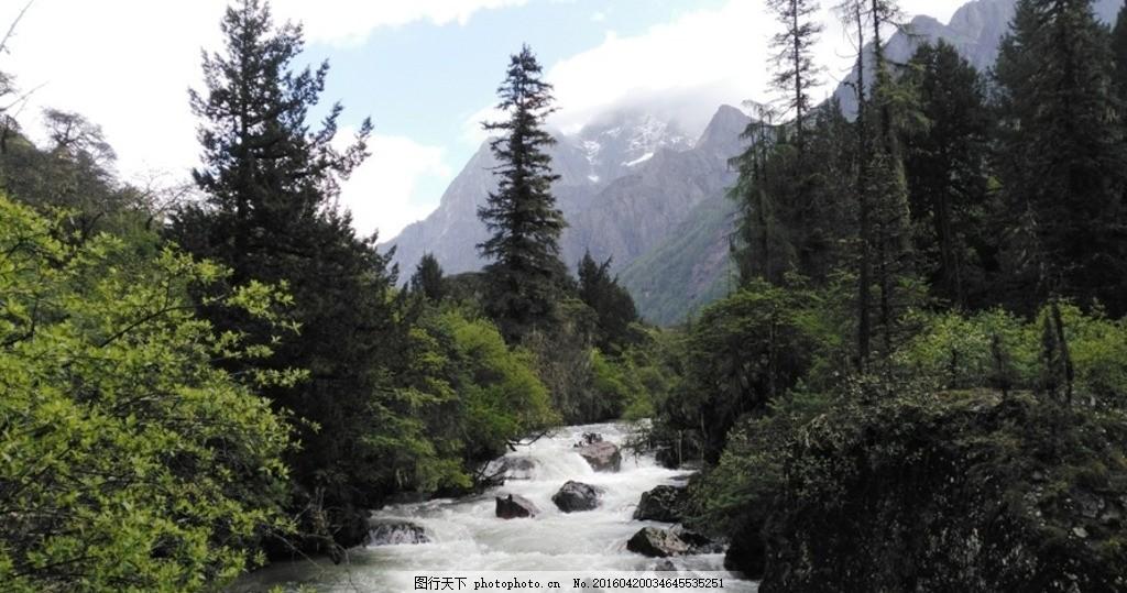 高山流水 雪山 高山 流水 小溪 山涧 森林 摄影 自然景观 风景名胜 72