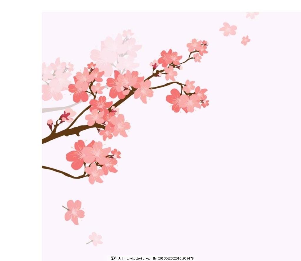 樱花 花枝 梅花 粉红色梅花 粉色 创意图图片