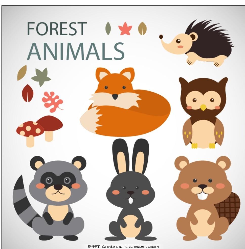 手 自然 动物 画 猫头鹰 森林 可爱的 叶 兔 绘画 狐狸 搞笑 兔子