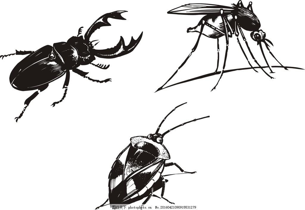 蚊子 知了 害虫 矢量 动物 昆虫 食物 生物世界