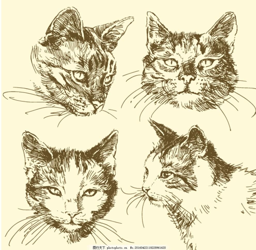手绘猫头 猫 猫头 宠物 动物 猫咪 矢量图 设计 创意图 设计 广告设计