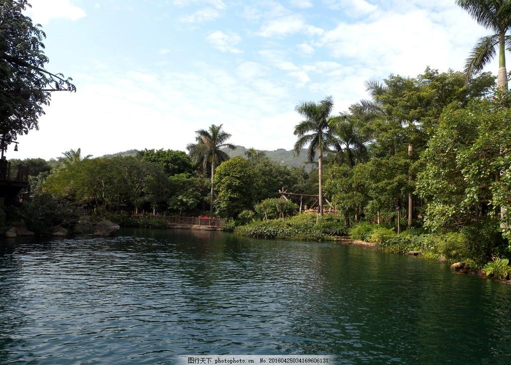 香港迪士尼 泰山树屋 湖上 风景 摄影 旅游摄影