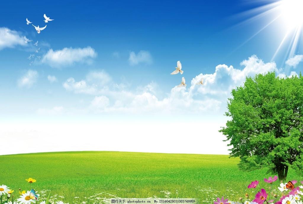 草地风景设计 鲜花风景设计 风景背景 风景广告 环境设计 环境广告