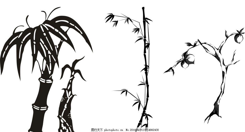 竹子 竹笋