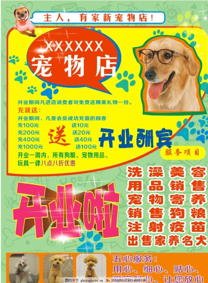 宠物店海报 宠物海报 宠物医院画册 宣传单 模板