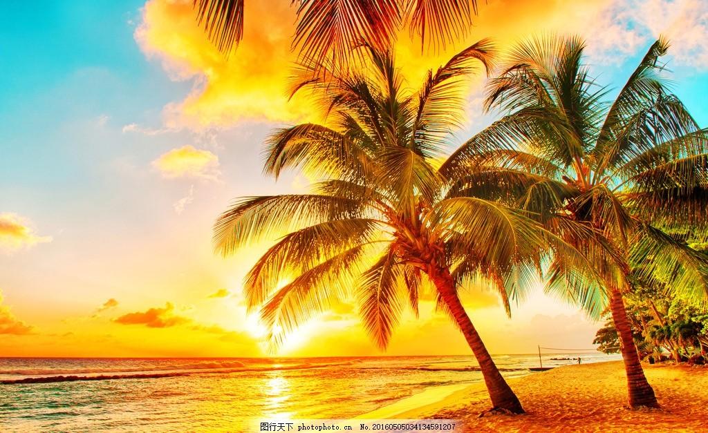 椰子树 海滩 大海 日出 海南 摄影 自然景观 自然风景 300dpi jpg