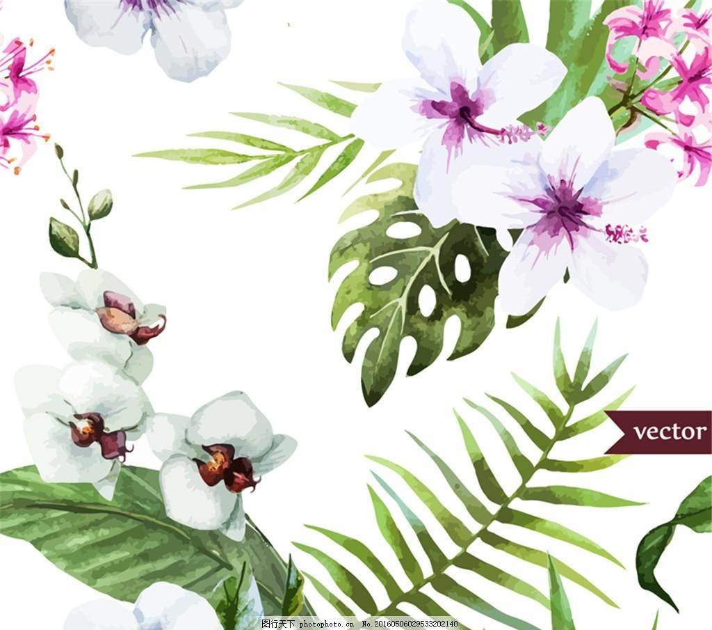白色扶桑花和蝴蝶兰矢量图 花卉 朱槿花 石蒜花 水彩画 龟背竹