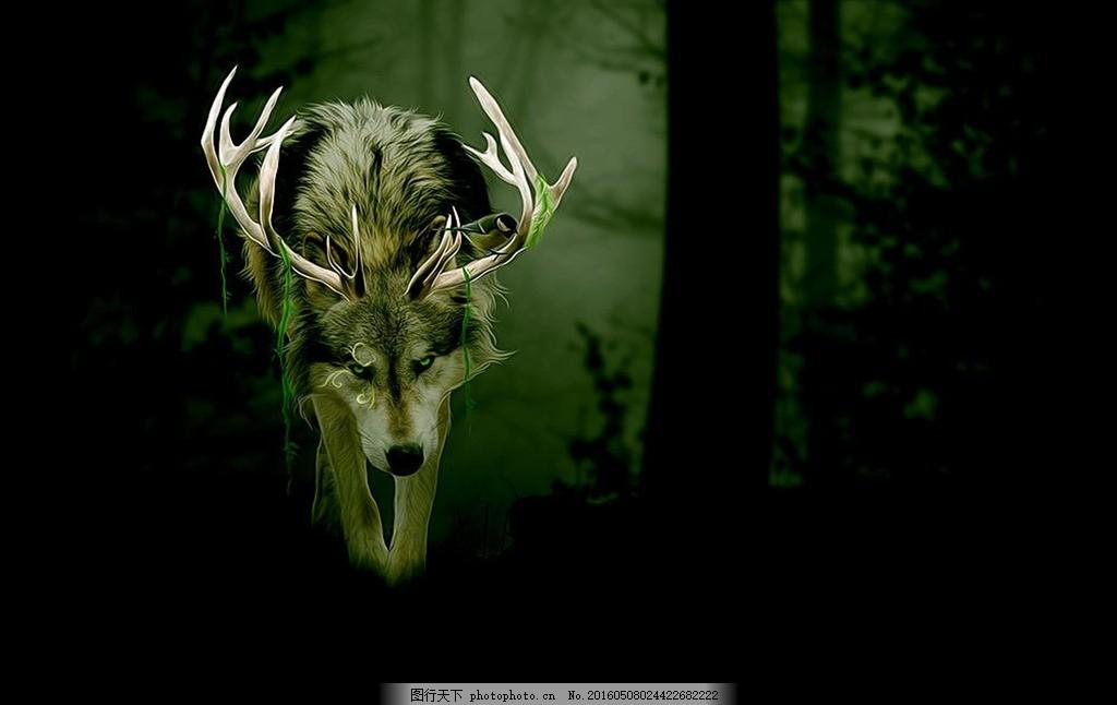 梦幻的狼族 摄影 炫丽 森林背景 动物世界