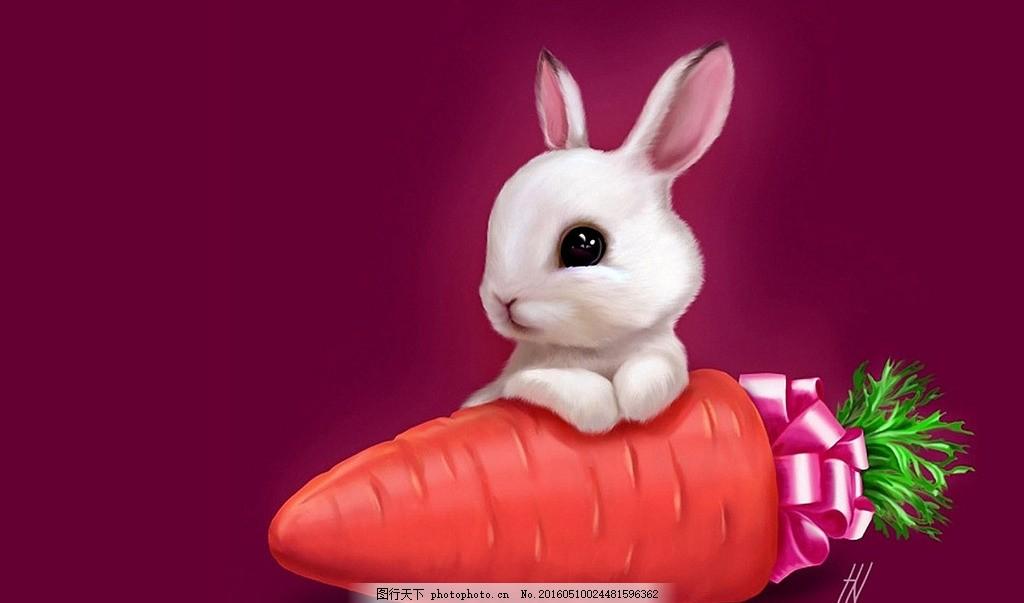 唯美可爱兔子