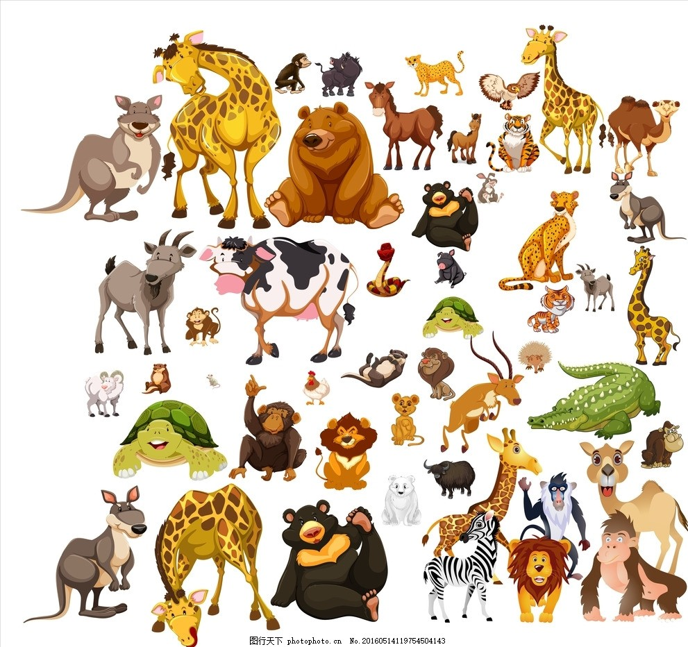 卡通动物,袋鼠 水牛 大熊猫 猩猩 长颈鹿 斑马 猴-图