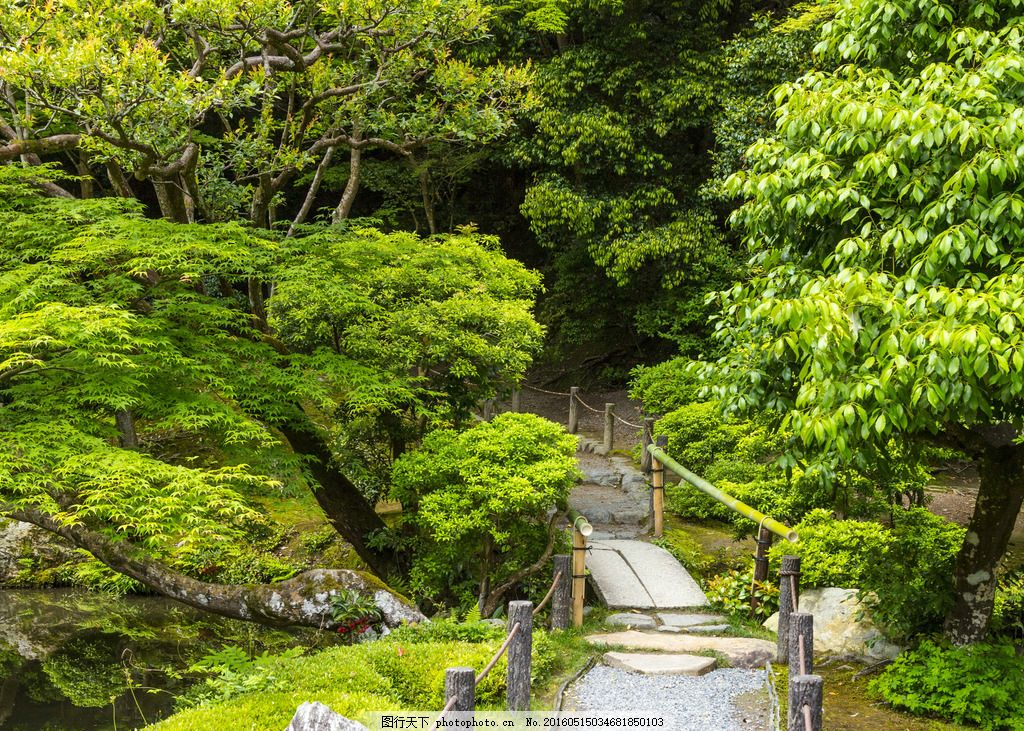 园林 森林 树林 大树 小桥 小路 河流 山水 灌木 公园 花园