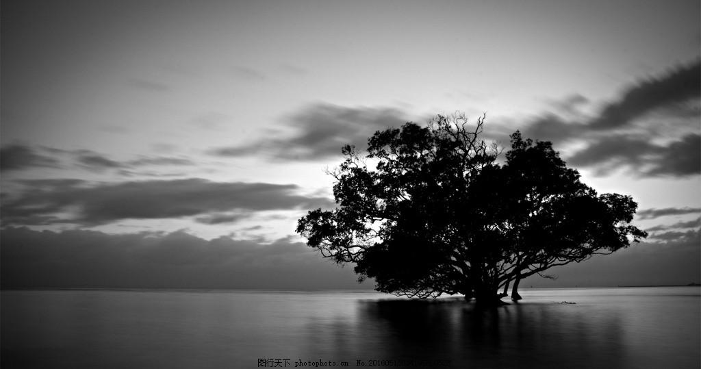 黑白风景 黑白 照片 风景 壁纸 自然 摄影 自然景观 自然风景 72dpi j