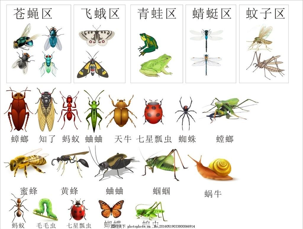 昆虫大汇总 昆虫汇总 小动物 益虫 害虫 自然生物飞蛾 青蛙 文字