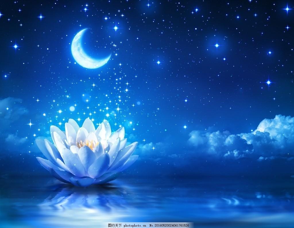 星空 荷花 月亮 莲花 唯美星空 星星 云 夜晚 风景 美景 大自然
