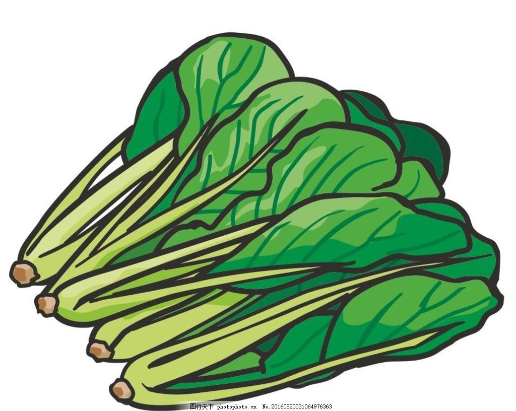 小白菜 青菜 蔬菜 简笔画 线条 线描 简画 黑白画 卡通 手绘