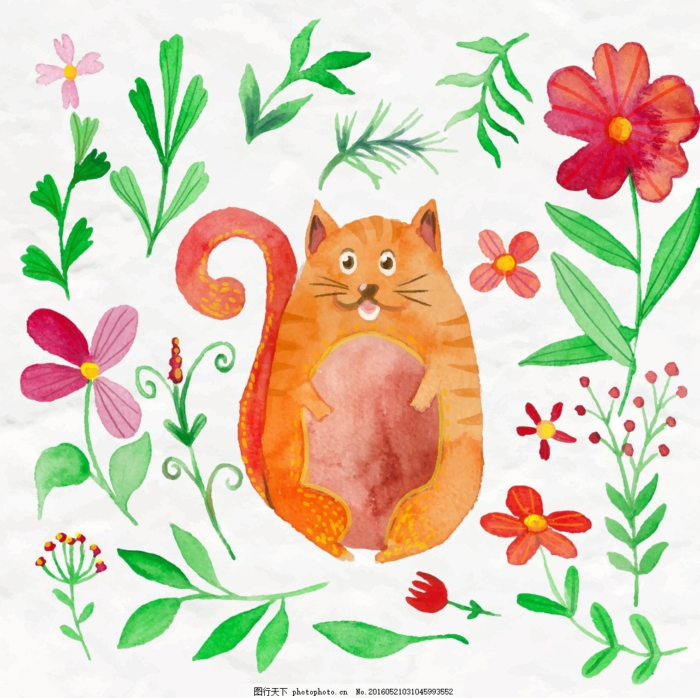 花 水彩 鲜花 手 自然 猫 动物 可爱的 叶 植物 尼斯 画 彩绘 植被