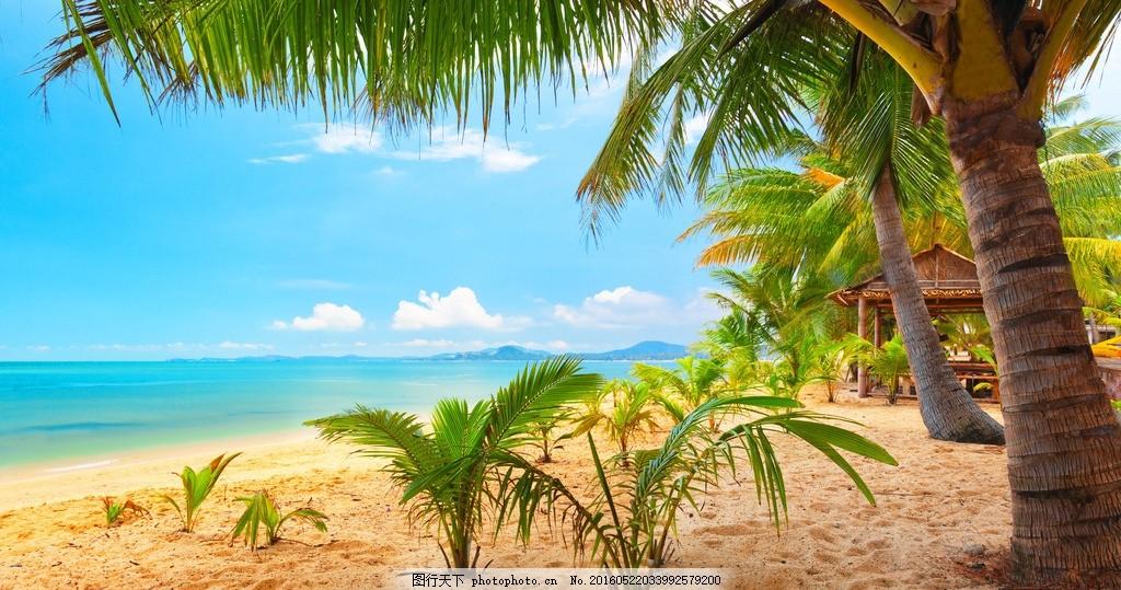 马尔代夫 热带 岛屿 美景 海滩 沙滩 椰子树 度假 天堂 唯美 梦幻