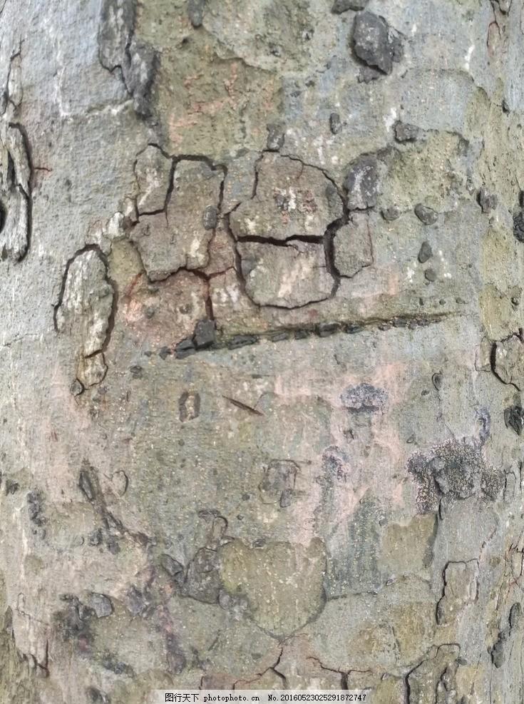 树皮肌理 树皮底纹 树纹贴图 树皮画 龟裂树皮 树皮素材 树皮材质