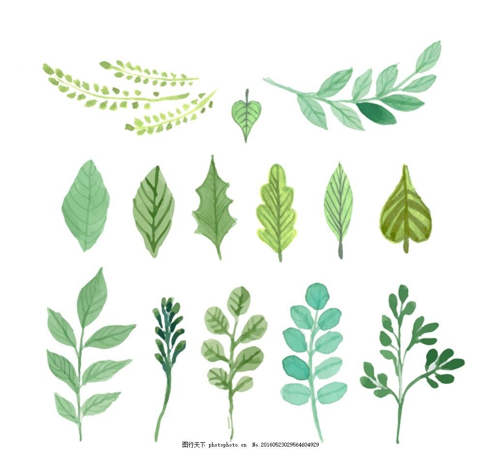 矢量素材 绿色 树叶 水彩 叶子树叶水彩 水彩树叶 设计 底纹边框 花边