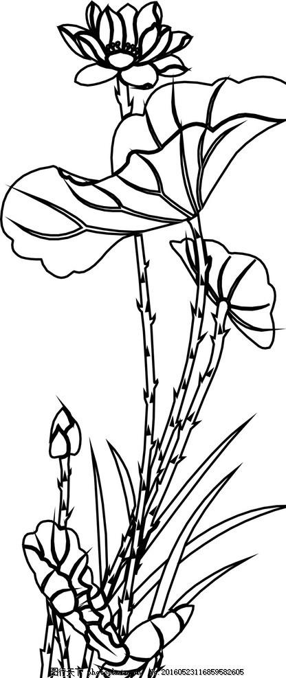 莲花 莲子 荷花 荷叶 莲 图案 设计 自然景观 自然风光 cdr