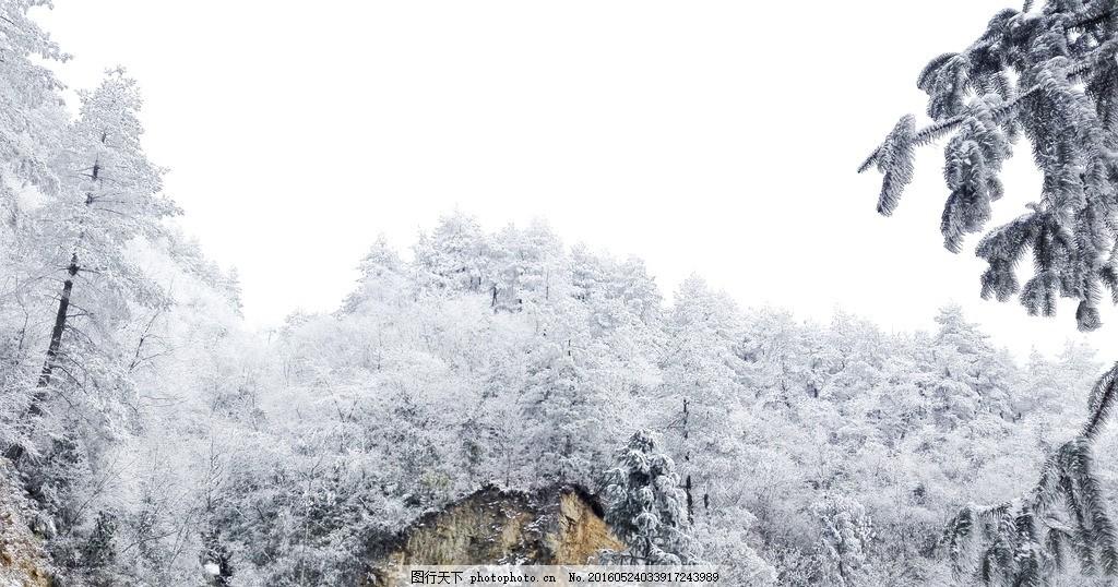 雪景 雷公山 冬天 雪 白色 贵州 凯里 黔东南 雷山 共享专辑 摄影
