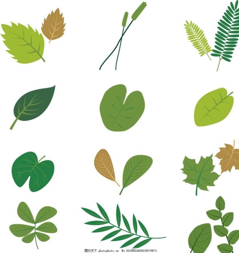 树叶纹理笔刷_叶子图片_树木树叶_生物世界_图行天下图库
