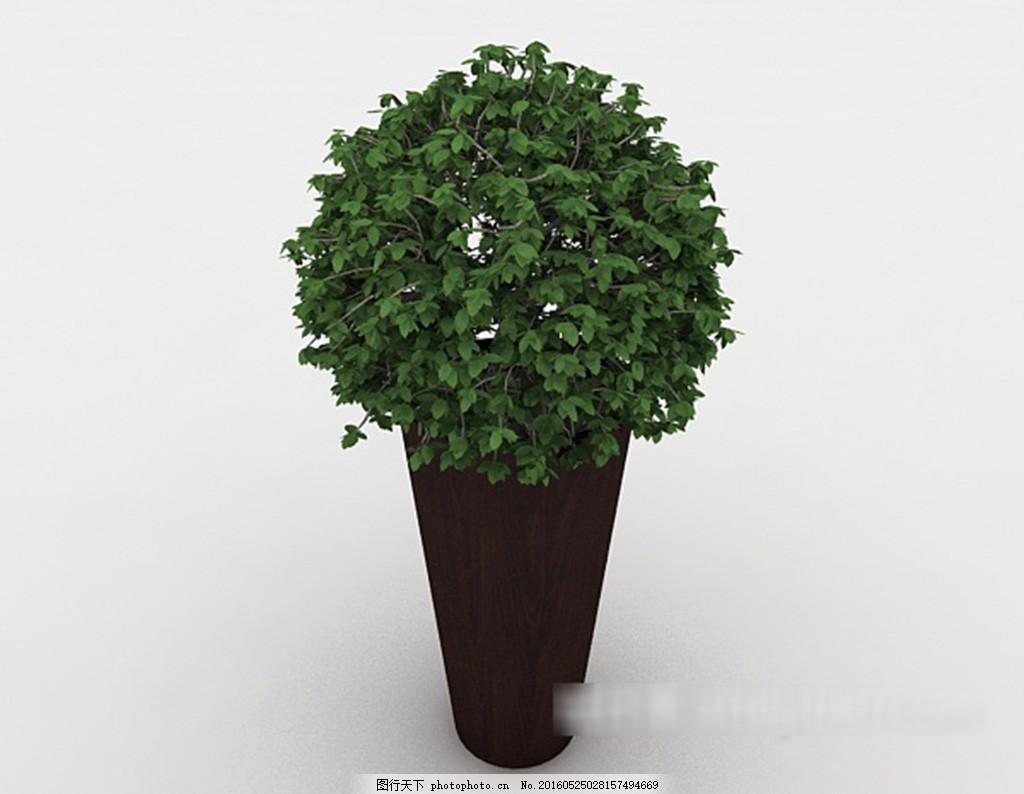 室内盆景3d模型下载 欧式风格模型 现代风格模型 白色