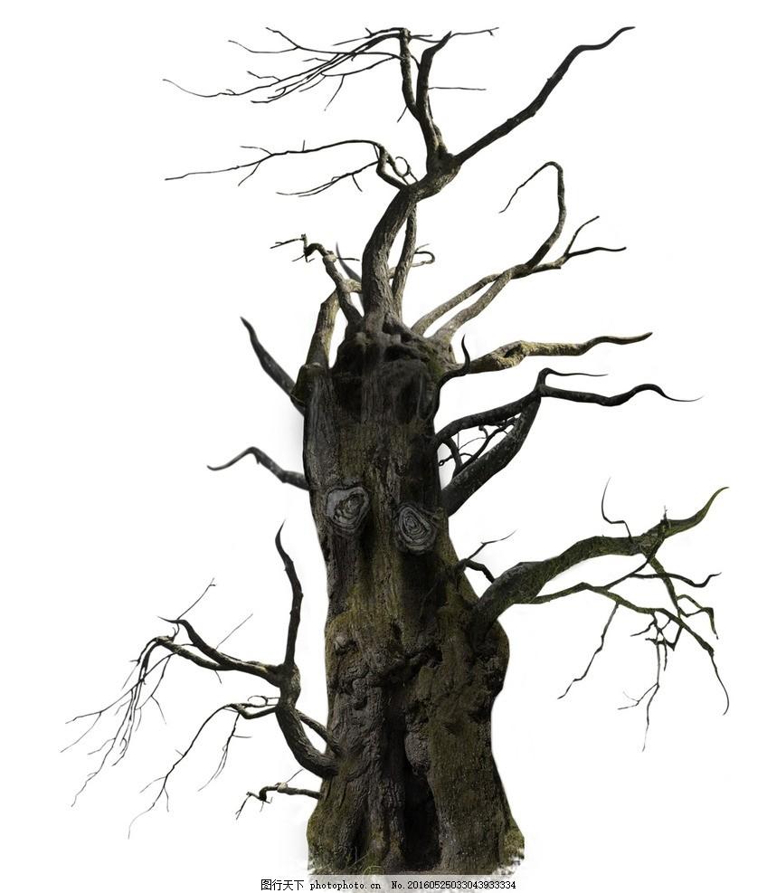 大树 树干 树枝 素材 剪影 设计 psd分层素材 psd分层素材 99dpi psd