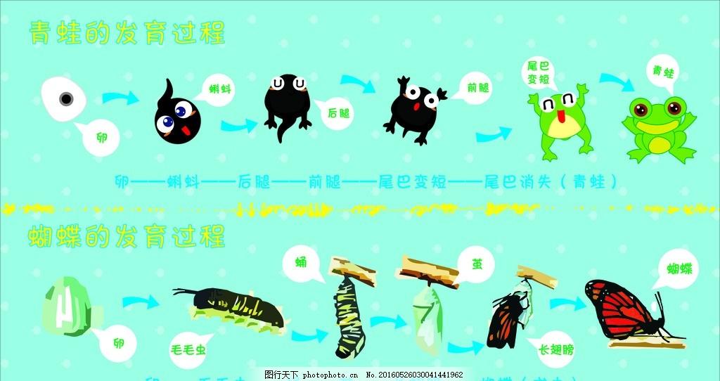 青蛙&蝴蝶成长记