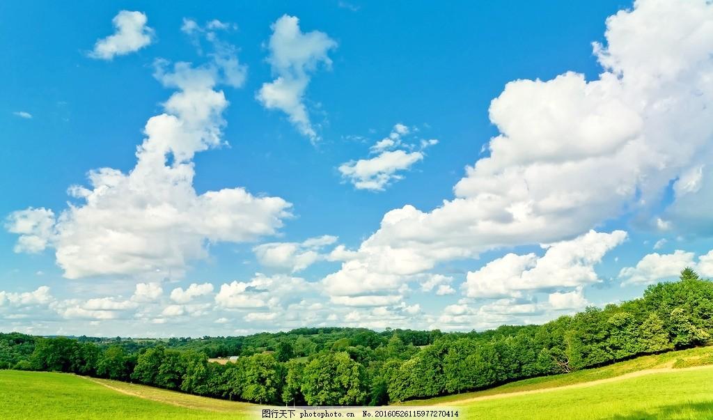 蓝天白云 蓝天 白云 草地 树林 森林 树 草 天空 风景 美景 大自然